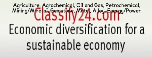 Economic diversification for a sustainable economy. Economic diversification for economic sustainability